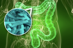 Top 3 Ways to Resolve Your Digestive Problems